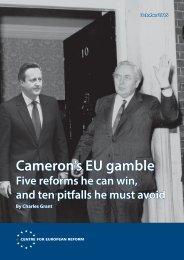 Cameron's EU gamble