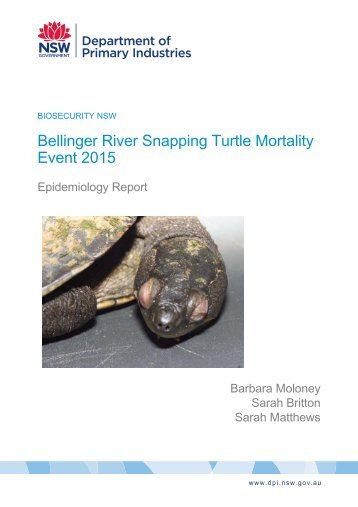 Bellinger River Snapping Turtle Mortality Event 2015