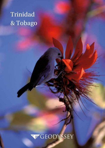 Geodyssey Trinidad and Tobago brochure for web use
