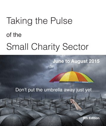 Taking the Pulse Small Charity Sector