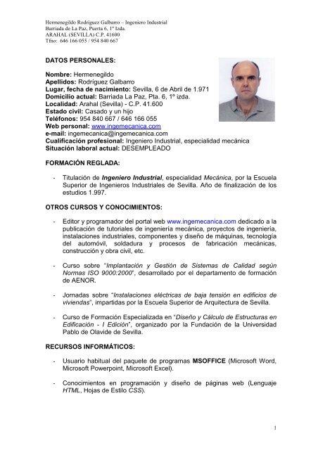 curriculum vitae profesional pdf