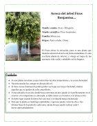 rbol, Ciencias Naturales - Page 2