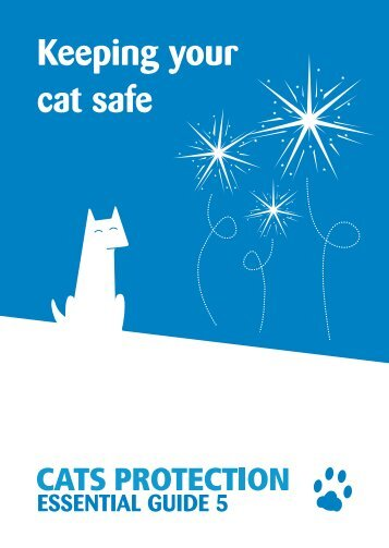 Keeping your cat safe