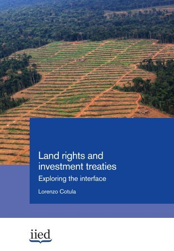 investment treaties