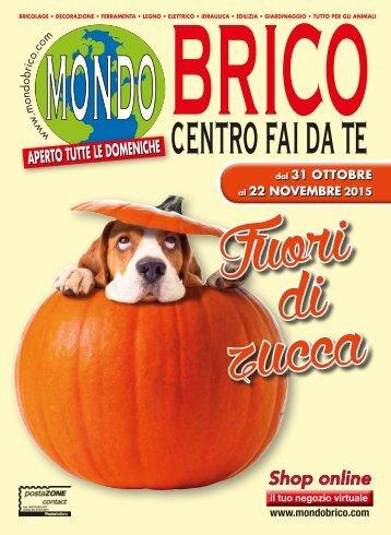 BRICO novembre 2015