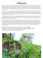 revista01 - Page 3