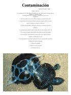 revista01 - Page 7