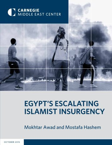 EGYPT'S ESCALATING ISLAMIST INSURGENCY