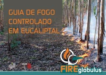 GUIA DE FOGO CONTROLADO EM EUCALIPTAL