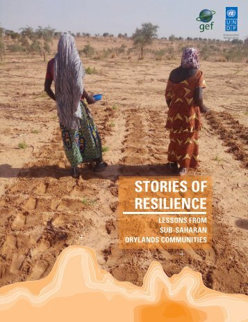 STORIES OF RESILIENCE