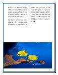 BIOLOGIA MARINA - Page 6