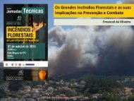 Os Grandes Incêndios Florestais e as suas implicações na Prevenção e Combate