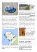 Cylchgrawn93 - Page 5