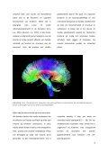 Effecten-van-fysieke-activiteit-op-cognitie-en-de-hersenen-van-kinderen-in-het-primair-onderwijs - Page 6