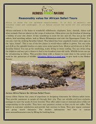 Reasonably Priced for African Safari Tours