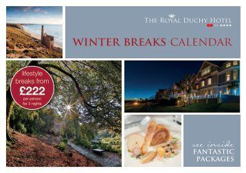 winter breaks calendar £222