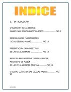 CÉLULAS MADRE  - Page 3