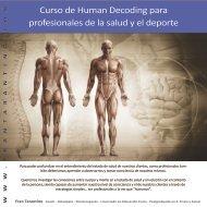 Curso de Human Decoding para profesionales de la salud y el deporte