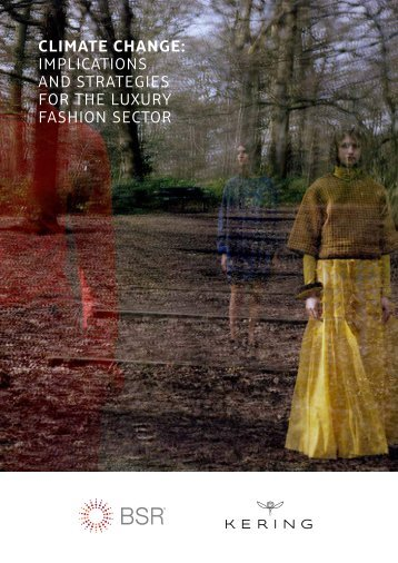Climate Change Implications and Strategies for the Luxury Fashion Sector