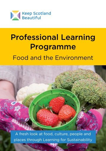Professional Learning Programme