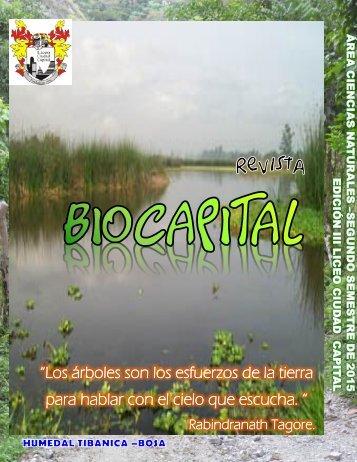 Revista Liceo