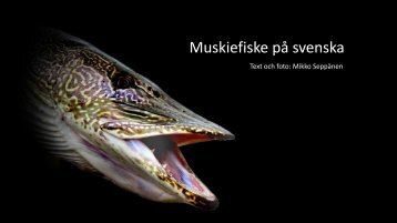 Muskiefiske på svenska