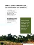 the Leuser Ecosystem - Page 7