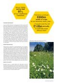 POLICIES FOR POLLINATORS - Page 7