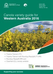 Canola variety guide for Western Australia 2016
