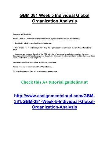 UOP GBM 381 Week 5 Individual Global Organization Analysis