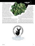 Annuals-vs.-Perennials - Page 4