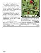 Annuals-vs.-Perennials - Page 7