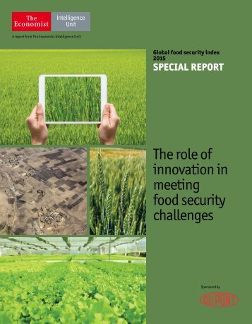The role of innovation in meeting food security challenges