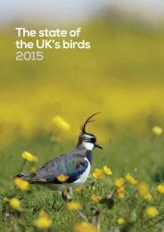 The state of the UK's birds 2015
