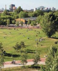 Designing Parks