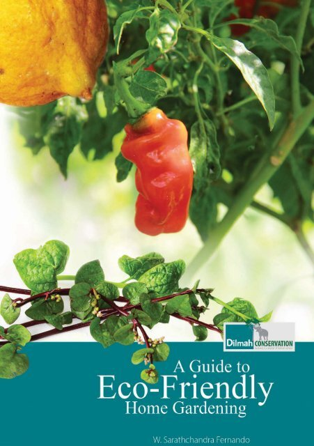 A Guide to Eco-Friendly Home Gardening