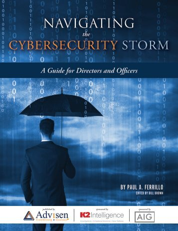 CYBERSECURITY STORM