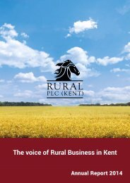 Rural PLC (Kent) Annual Report 2014