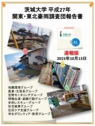 水害調査団報告書(速報版20151013)