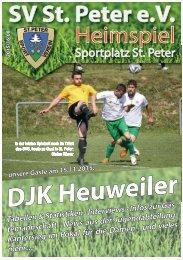 SVS-Heimspiel 2015/16-08