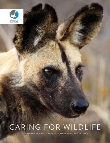 CARING FOR WILDLIFE