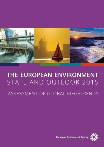 STATE AND OUTLOOK 2015