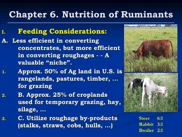 Chapter 6 Nutrition of Ruminants