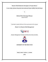 Disaster Risk Reduction Strategies in Preparedness: A case study of ...