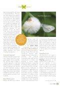 Comma No92 Autumn 2015 - Page 3