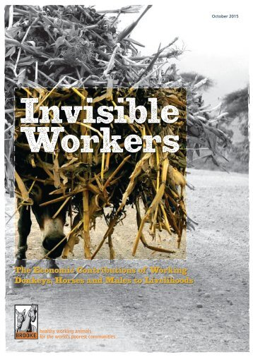 Invisible Workers