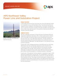 APS Northeast Valley Power Line and Substation Project