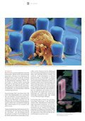 nd ieße flflii n stabil b - Kompetenznetze - Page 6