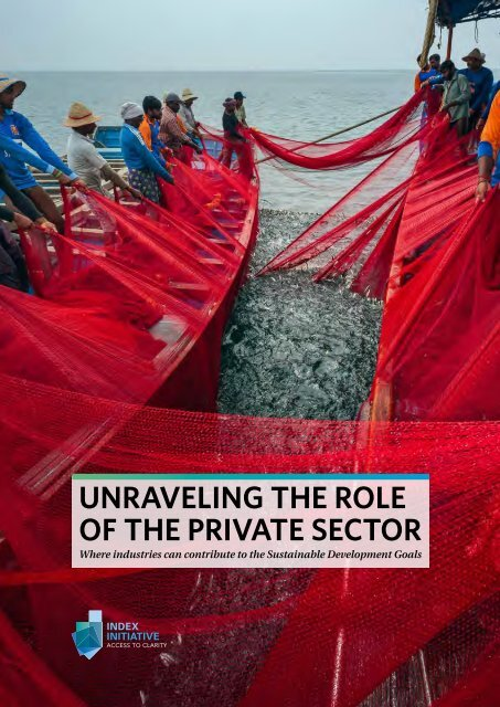 Unraveling the role of the Private Sector