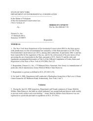 Zinsser Company Inc. Consent Order - New York State Department ...